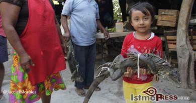 En-Juchitan-comer-iguana-no-es-pecado-jacciel-morales