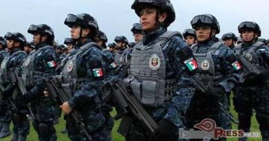 Gendarmería Ambiental podría comenzar a operar a finales de año