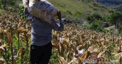 El pueblo Binni'za no es obstáculo para el desarrollo del istmo