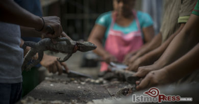 Comer iguana no es un delito, es un deleite para los zapotecas