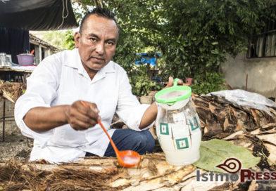 La taberna, la bebida ancestral de los zapotecas