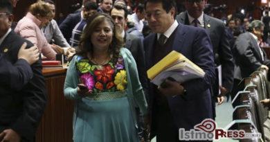 La Guardia Nacional aportará a recuperarla paz en todo país: Rosalinda Domínguez Flores