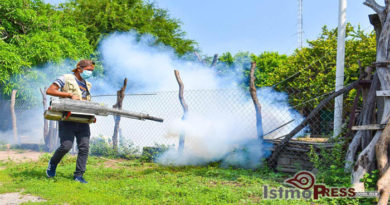 18 Ago Contra el Dengue