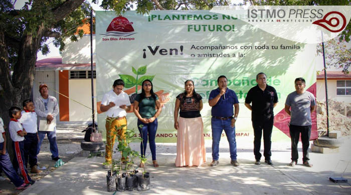 11 Feb SB reforestación