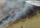 """Incendio consume más de 20 hectáreas de la reserva natural """"La Sabana"""" en Oaxaca"""