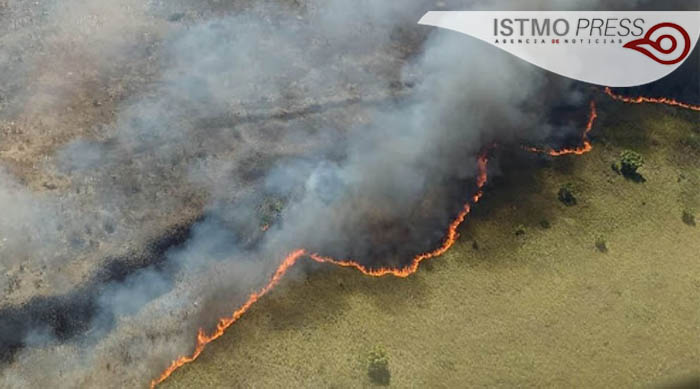 "28 Mar Incendio consume ""La Sabana""  en Oaxaca"