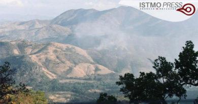 14 Abr Proteger el territorio forestal