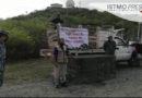 Liberan iguanas para que se siga preservando la fauna istmeña