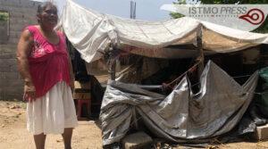 27 Jun Sobreviven debajo de lonas a casi tres años del terremoto2