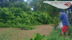 daños por tormeta tropical1