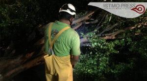 daños por tormeta tropical2