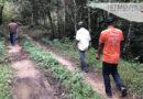Los resineros indígenas que protegen un rincón de los Chimalapas | México