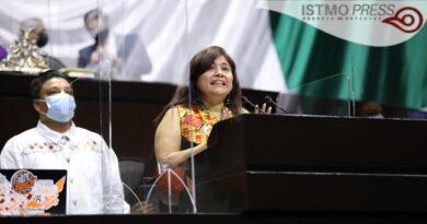 La infraestructura es clave para el desarrollo: Diputada Rosalinda Domínguez Flores