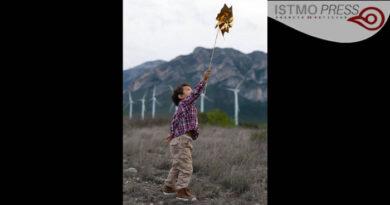 """AMDEE anuncia ganadores del segundo concurso nacional de fotografía """"Mi vida y el viento"""""""
