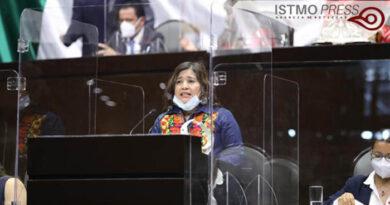 Tenemos que regular la subcontratación y abogar por los trabajadores: Dip. Rosalinda Domínguez Flores