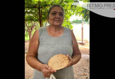 Totopo de ajonjolí en Comitancillo, creación de la señora Roselia Santos.