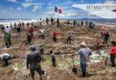 Esfuerzo de pueblos hermanos abre canal en la bocabarra de San Francisco: agente de Playa Vicente