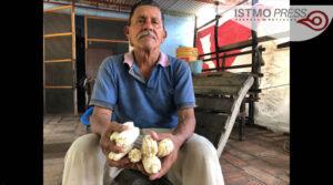 Héctor Cartas campesino zapoteca5