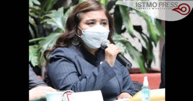 Propone Dip. Rosalinda Domínguez un anexo Transversal que facilite la articulación de la política pública