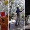 Construyen pino de navidad ecológico con más de 2 mil botellas PET