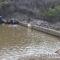 Sufren escasez de agua potable en Matías Romero, cumplen 7 días