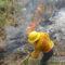 7 incendios activos en selva de Chimalapas, sierra norte y zona mixe de Oaxaca