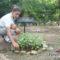 Estudiantes de secundaria cosechan plantas medicinales a través del huerto escolar